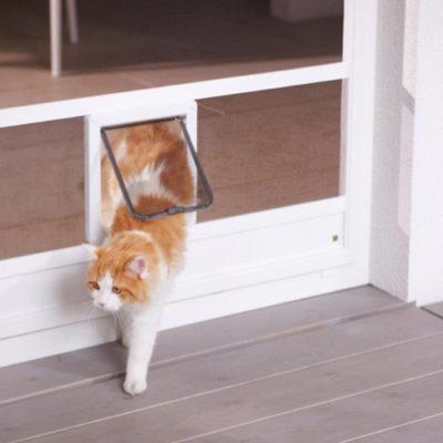 Insektenschutz für Terrassentür mit Katzenklappe von erfal