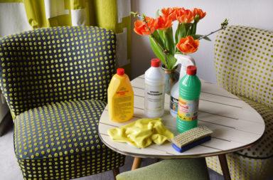 Reinigungsmittel zur Reinigung von Polstermöbeln